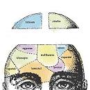 menu_head_square
